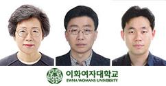 교수 소식 : 이남숙, 임경민, 이상욱 교수 대표이미지
