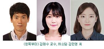 김태수 교수팀
